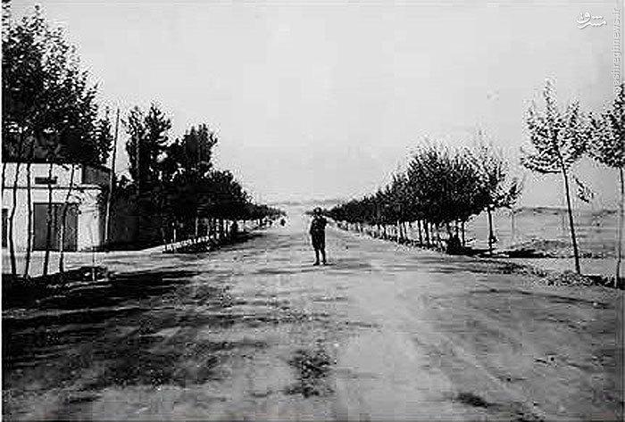عکس / خیابان ولیعصر در سال 1315