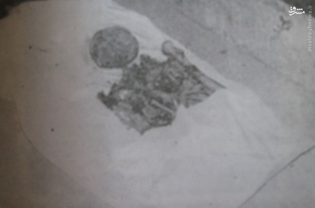 عکس/ صندوق استخوانهای نادرشاه
