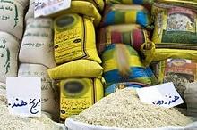 چرا برنجهای خارجی قد میکشند؟