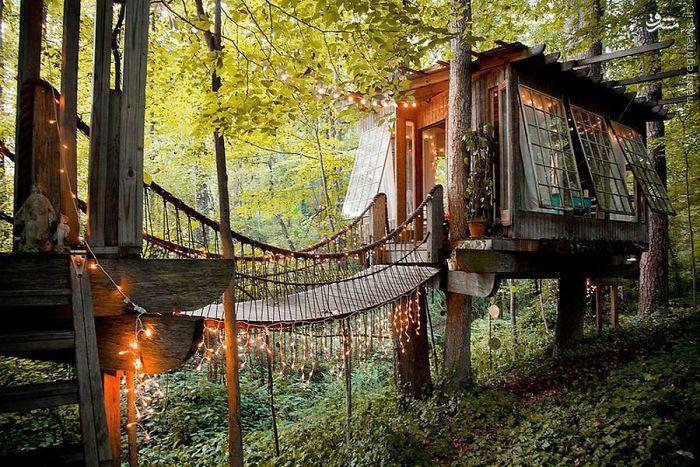دیدنی ترین خانههای درختی