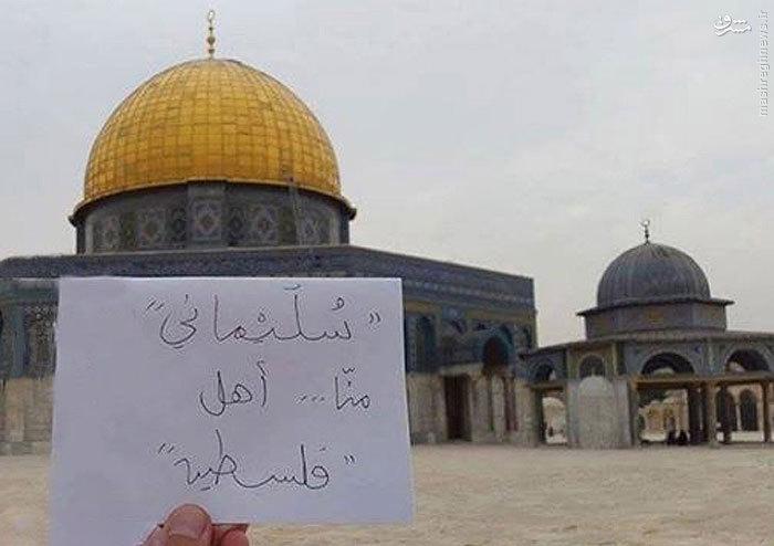 عکس/محبوبیت حاج قاسم در فلسطین