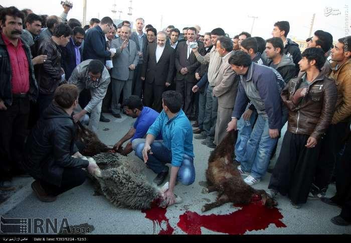 عکس/ قربانیان سفر رئیس سازمان میراث فرهنگی