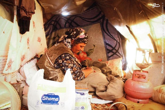 زندگی یک زن تنها در خانه پلاستیکی