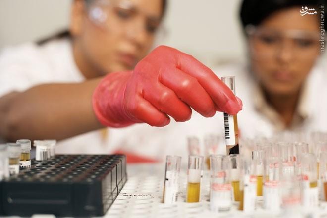 هند، مستعمره جدید شرکتهای دارویی آمریکا // در حال ویرایش