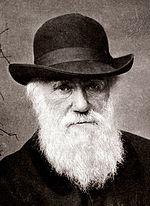 کوتهبینی داروین نظریهاش را نابود میکند + فیلم و تصاویر // در حال ویرایش