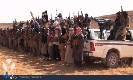 مهمترین رکن ساختار تشکیلاتی داعش چیست؟
