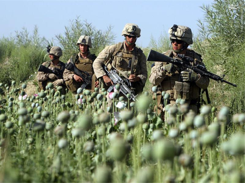 وقتی آمریکا بر ضد ملحدان اسلام ستیز قیام کرد!/ نقش مواد مخدر در رشد تروریستهای تکفیری/آماده انتشار/آماده