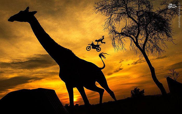 عکسی زیبا از پرش یک دوچرخه سوار