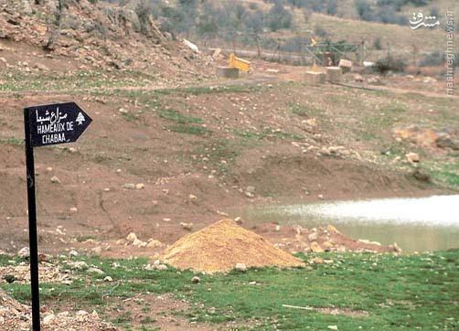 دستاوردهای عملیات حزبالله در  مزارع شبعا/