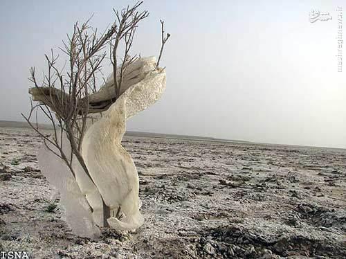 کمآبی و خشکسالی؛ خطری بزرگتر از گسترش سلاح هستهای +تصاویر