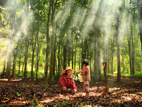 برگزیده های مسابقه عکاسی زیست شناسی