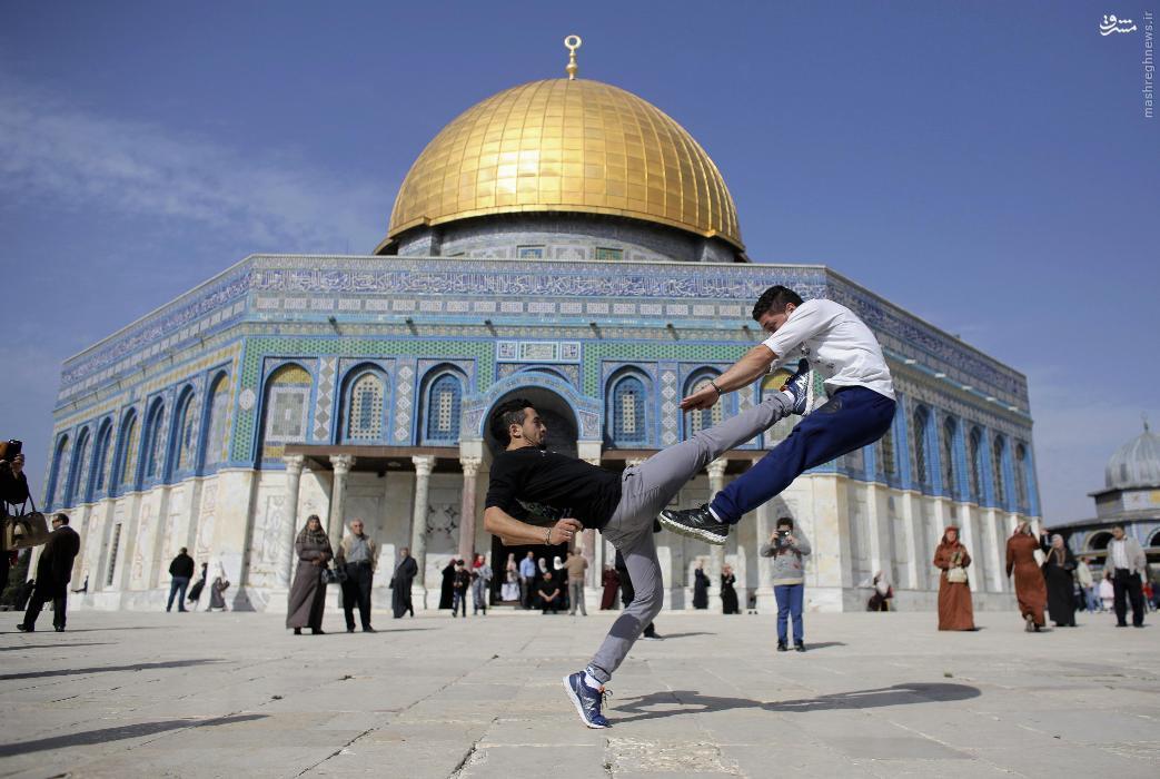 791457 164 عکس/ صحنهای جالب در صحن بیتالمقدس