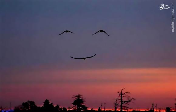 عکس/ شکار لبخند طبیعت