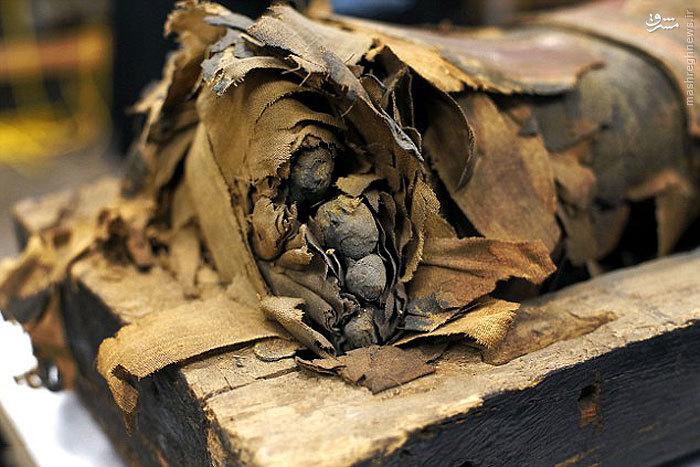 تابوت جنازه مومیایی پسر 14 ساله