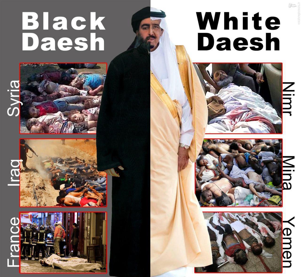 عکس/ تفاوت داعش سیاه و داعش سفید