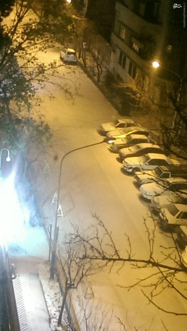 عکس/ تگرگ روی تهران را سفید کرد