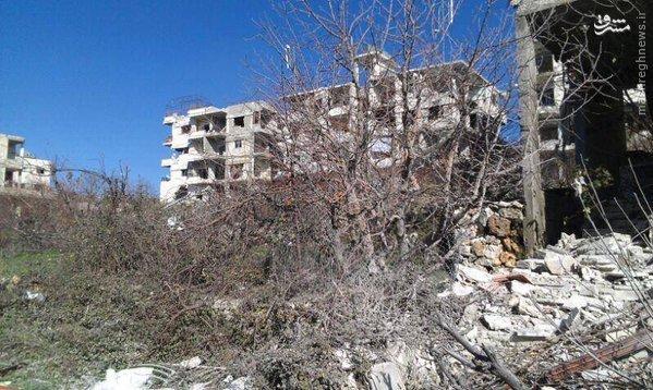 شهر سلمی پس از آزادسازی+تصاویر