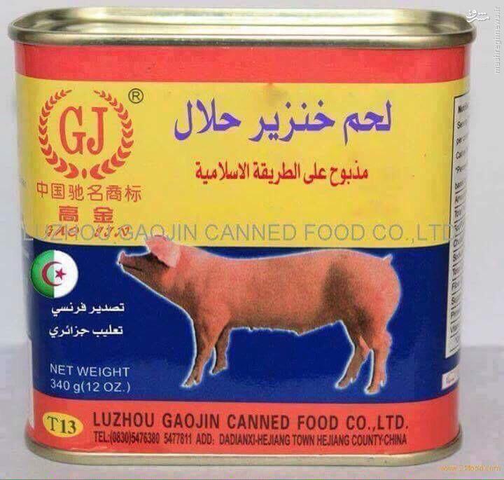 گوشت خوک حلال هم آمد+عکس
