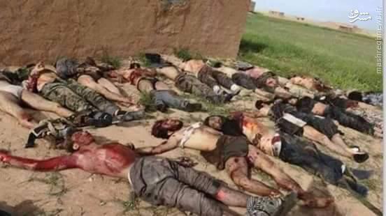 هلاکت تروریستهای داعشی تبعه ترکیه در استان حسکه