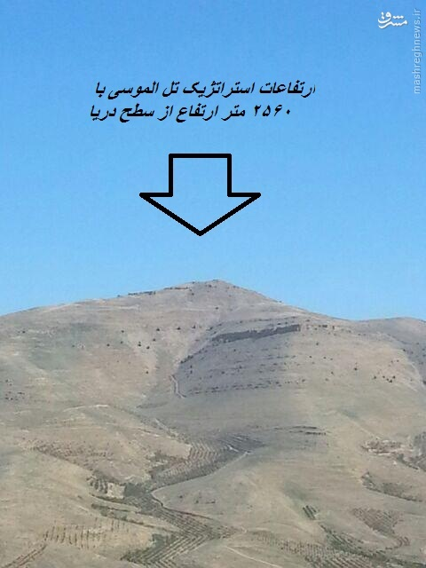 تصویر شهید حزب الله که فضای شبکه های اجتماعی را به آتش کشید!