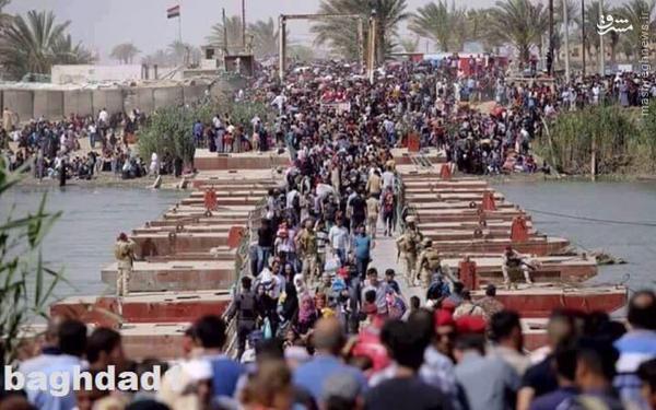 تفاصیل سقوط رمادی بدست داعش/قتل عام صدها نفر از عشایر اهل سنت/درخواست دولت از حشد الشعبی برای بازپس گیری شهر