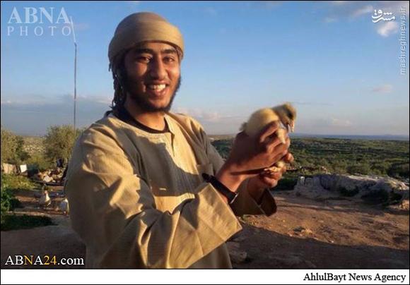 بن لادن جبهه النصره به هلاکت رسید +عکس