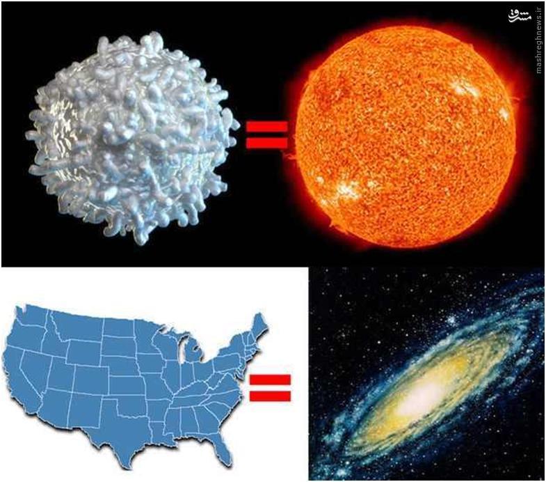 اما این پایان کار برای درک عظمت جهان هستی نیست. اگر بخواهیم اندازه خورشید را با کهکشان راه شیری مشخص کنیم، باید آنها را به گلبول سفید خون (خورشید) و کشور آمریکا (کهکشان راه شیری) تشبیه کنیم.