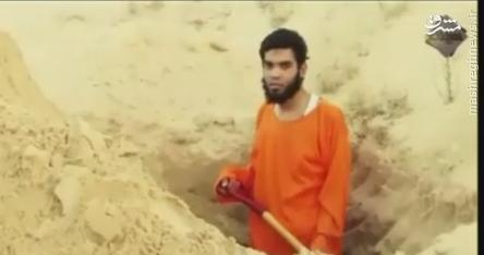 جاسوس داعش گورش را خودش کند+عکس