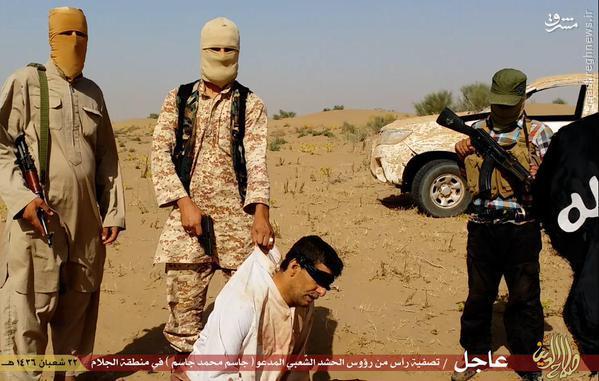 اعدام رئیس عشیره سنی توسط داعش+تصاویر