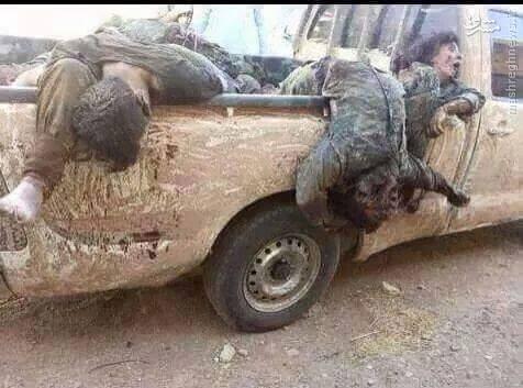 شکار روزانه دهها تروریست در بیجی بدست حشد الشعبی+تصاویر