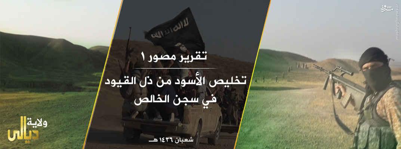 فرار بزرگ زندانیان زندان الخالص عراق!