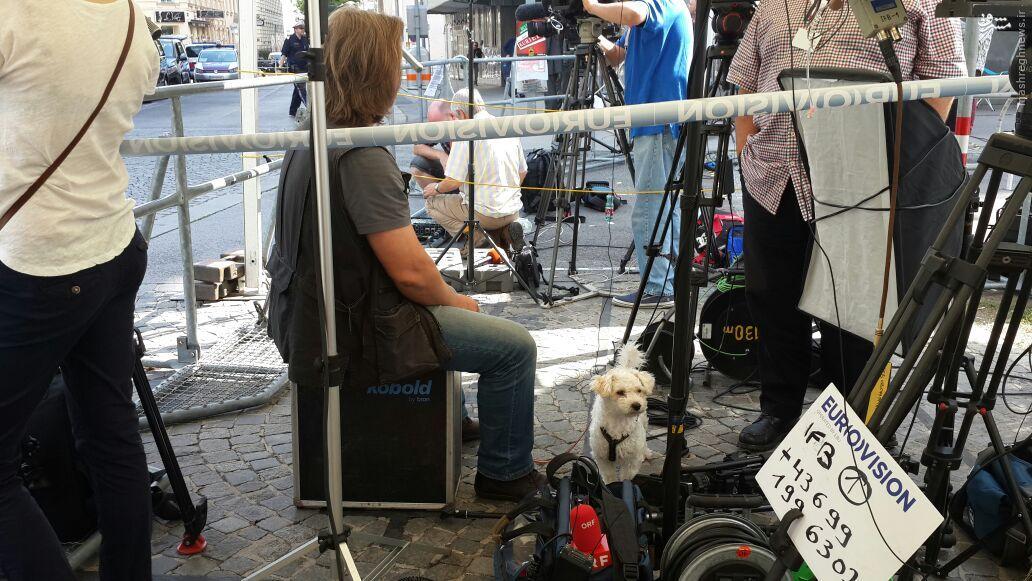 عکس/ خبرنگاری که با سگش به وین آمده!