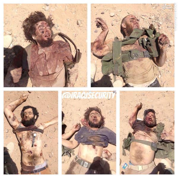 شکار داعشی ها در بیجی+عکس و فیلم