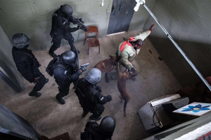 عکس/ رهایی گروگان با کمک سگ