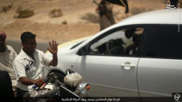 فعالیتهای داعش در شبوه یمن+تصاویر