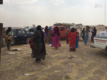 فرار دسته جمعی صدها عراقی از مناطق داعش+تصاویر