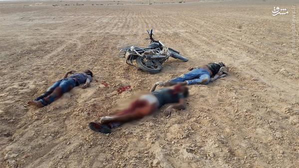 حمله ناکام داعش به پاسگاه ارتش مصر+تصاویر