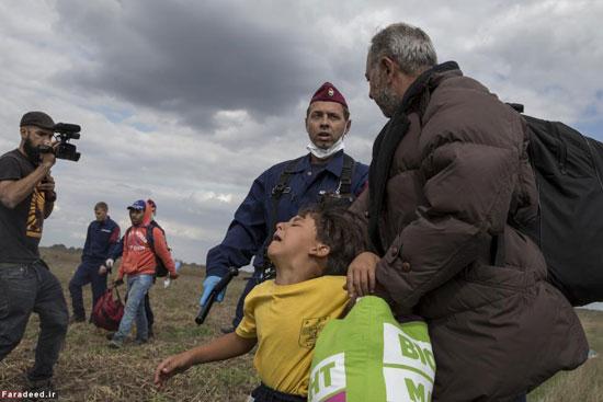 پناهنده سوری که بود؟ //// در حال ویرایش