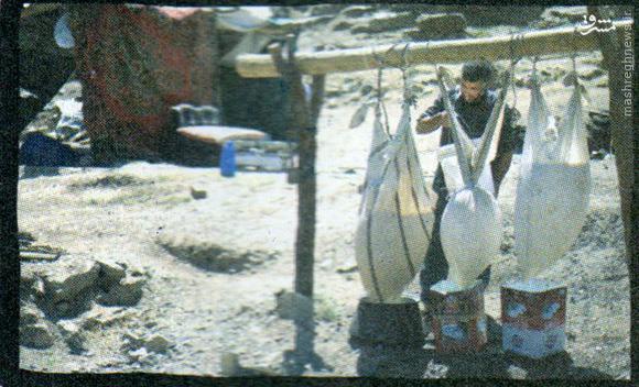 عکس/پر شهیدترین روستای ایران