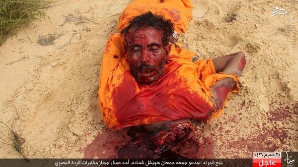 ذبح پیرمرد مصری توسط داعش+تصاویر