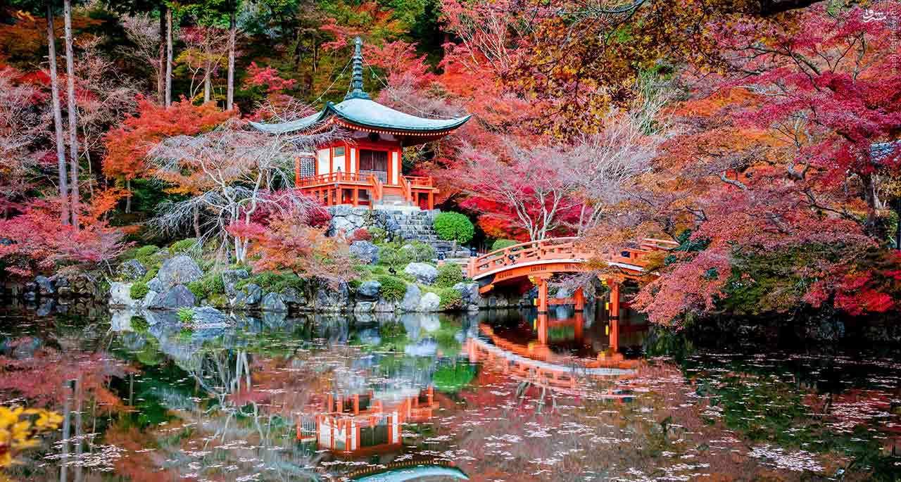 توسعه ژاپن: داستان ملتی که از شکست هایش درس گرفت