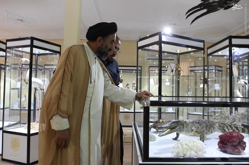 موزه ای ایرانی که میخواهد درس زندگی بدهد + فیلم و تصاویر
