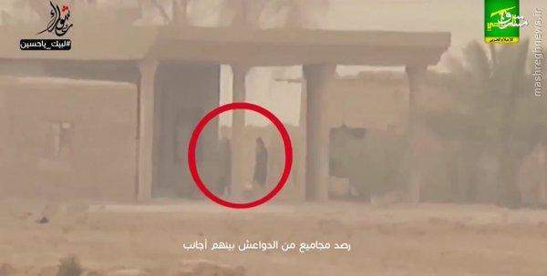 شکار 4 داعشی توسط تک تیرانداز+عکس و فیلم