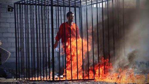 زنداني سابق داعش: خلبان اردني زنده است