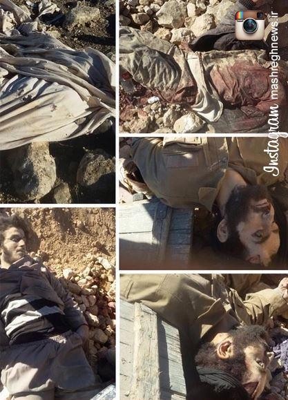 عکس/ تروریستهایی که امروز به درک واصل شدند