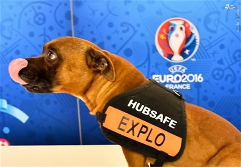 تدابیر امنیتی فرانسویها برای قرعهکشی یورو ۲۰۱۶ + عکس