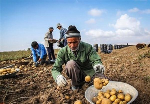 میراث دولت هاشمی برای دولت یازدهم