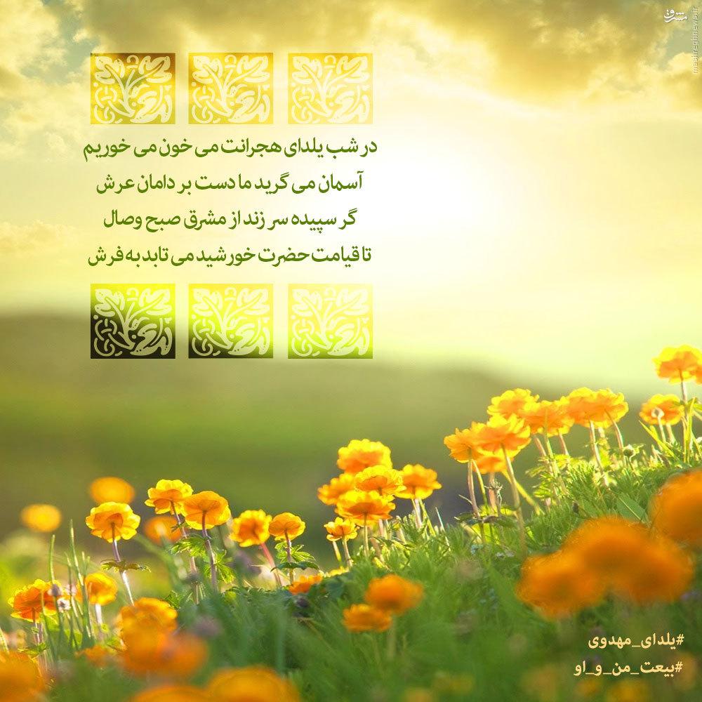 #یلدای_مهدوی