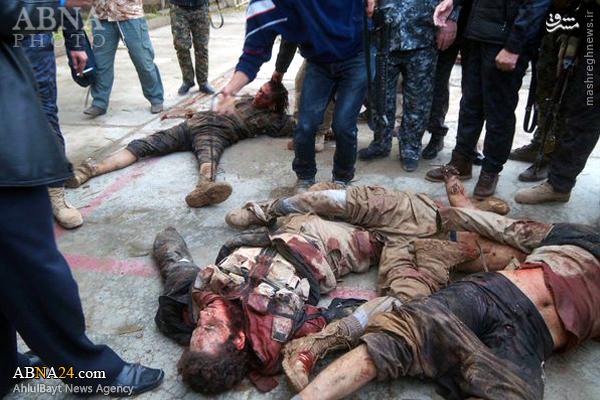 ضربه ترکمنهای الحشد العشبی به داعش+عکس