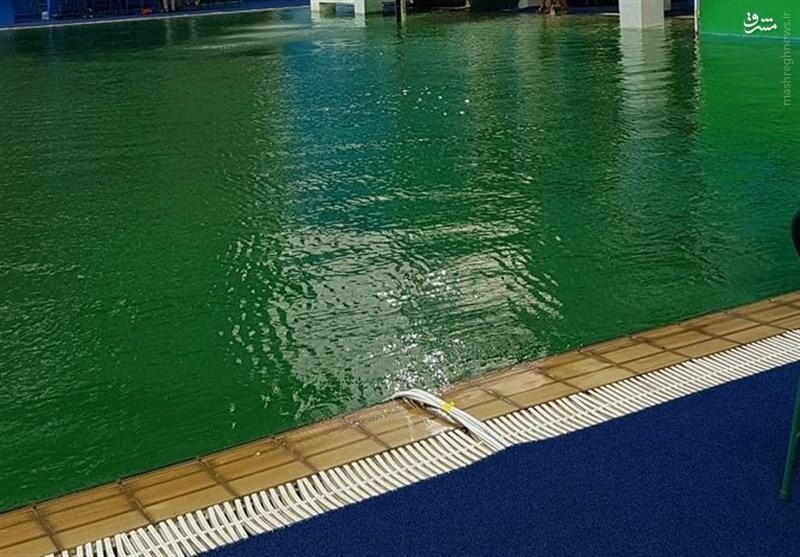 آب استخر شیرجه المپیک یک شبه سبز رنگ شد + تصاویر